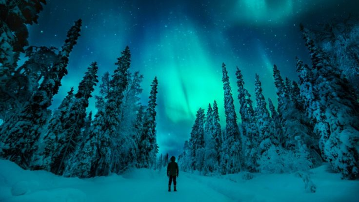 A snowy landscape with northern lights on the background.