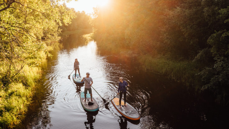 Three people on a SUP board in a river in the middle of the forest