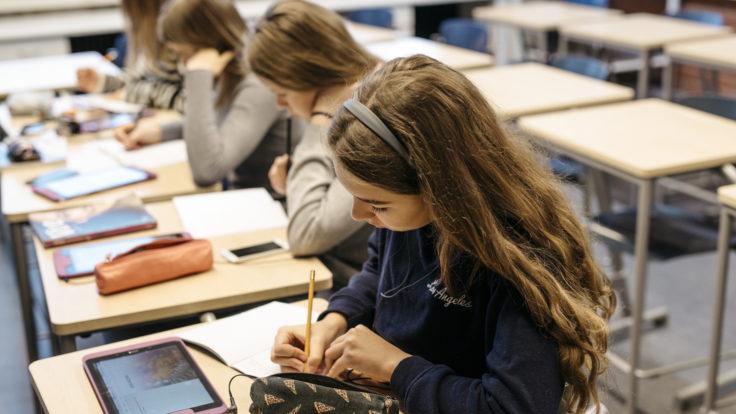 Girls studying in school