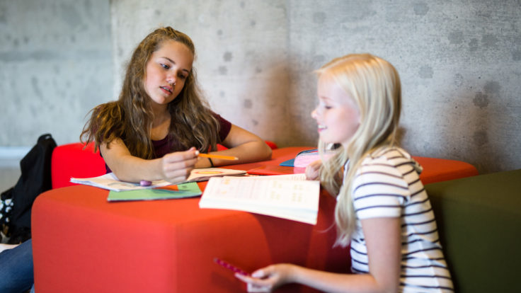 Two girls doing schoolwork together.